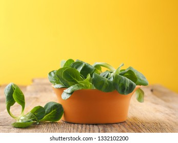 Fresh organic Lamb's lettuce in a rustic ceramic bowl on a wooden kitchen table, healthy food