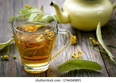 fresh organic linden flower tea