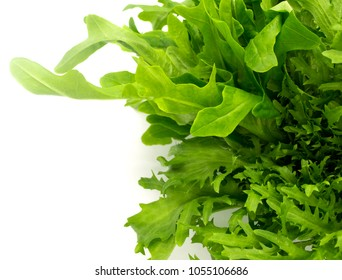 fresh organic of mix salad vegetables isolate on white background, green lettuce and mizuna lettuce (Japanese Mustard), ingredients are preparing in the blow for cooking, healty