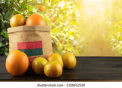 Fresh Organic Orange Fruits Cara Cara Navel and Tangerine in the Bag on Wood Table in the Garden , Popular Agriculture Product Hight Vitamin C for Made Beverage in Summer