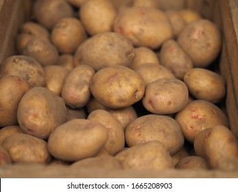 Fresh Organic Potato on Tray at the Farmer Market, Selective Focus. A pile of organic potatoes lying in a tray