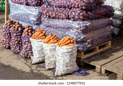 Fresh organic potatoes and carrots of new harvest for sale at the farmers market