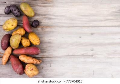 fresh organic potatoes varieties over plank rustic background