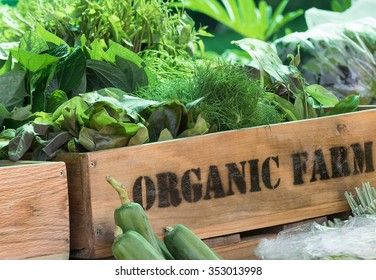 Fresh organic produce from farm in wooden box