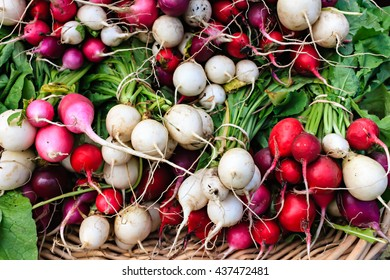 Fresh organic radishes at a local farmers market.