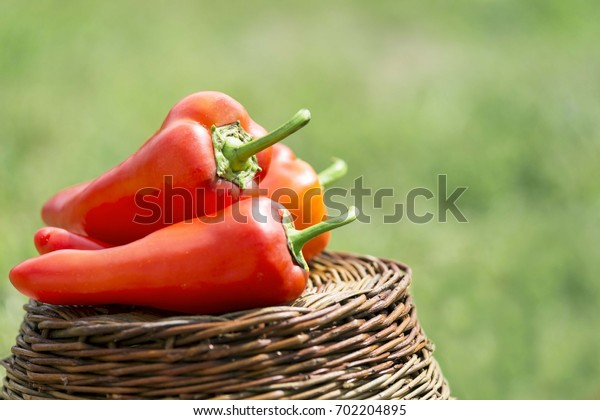 fresh organic red peppers