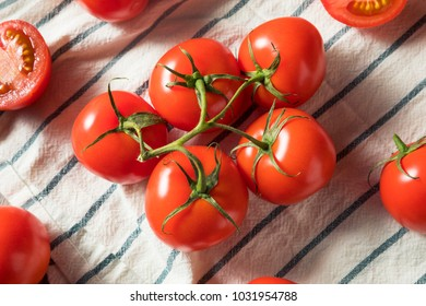 Fresh Organic Red Tomatoes in a Bunch