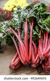 Fresh organic rhubarb on local farmers market. Rustic style, wooden background