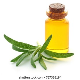 Fresh organic rosemary with essential oil in a bottle over white background