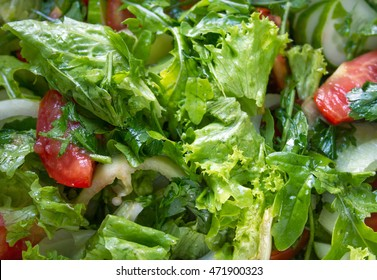 The fresh organic salad with salat,cucumber,tomato, rucola (salad rocket) and onion. The organic greens on the plate.