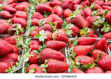 Fresh Organic Strawberries on the Marketplace