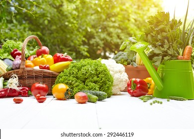 Fresh organic vegetables and fruits on wood table in the garden