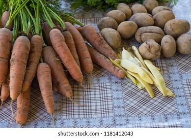 fresh organic vegetables from garden