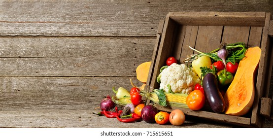 fresh organic vegetables in wood crates on wooden floor with copy space. concept vegetables fresh from the farm. Long banner