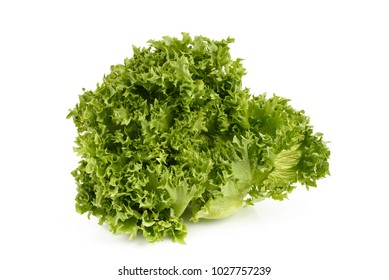 Fresh organic vetgetable lettuce isolated on white background.