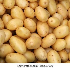 Patatas jóvenes orgánicas frescas vendidas en el mercado