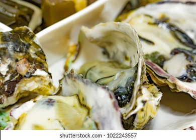Fresh Oyster, Korean Sashimi Raw Fish Plate Side Dish Appetizer.