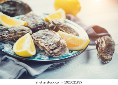 Fresh Oysters close-up on blue plate, served table with oysters, lemon and ice. Healthy sea food. Fresh Oyster dinner in restaurant. Gourmet food