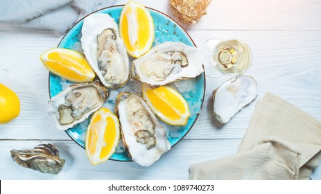 Fresh Oysters close-up on blue plate, served table with oysters, lemon and ice. Table top view. Healthy sea food. Fresh raw Oysterwith champagne dinner in restaurant. Gourmet food. Tabletop