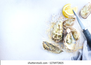 Fresh Oysters close-up open with knife, served table with oysters. Healthy sea food. Oyster dinner in restaurant. Gourmet food. border design with copy space for your text. Top view, flatlay