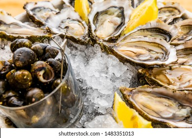 Fresh oysters with lemon, bread and butter.