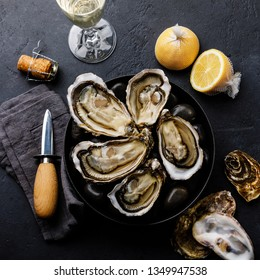 Fresh Oysters with lemon and champagne on stones on dark background