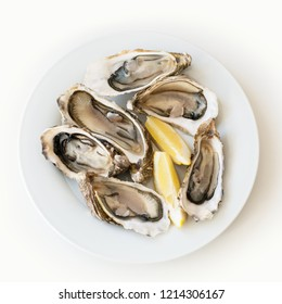 Fresh oysters with lemon. Raw fresh oysters on white round plate, image isolated, with soft focus. Restaurant delicacy. Saltwater oysters