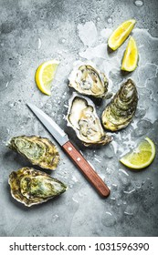Fresh oysters on ice, knife, lemon wedges. Rustic stone background. Opened fresh raw oysters. Top view. Close-up. Oyster bar. Seafood. Oysters concept. Party food. From above. Expensive seafood