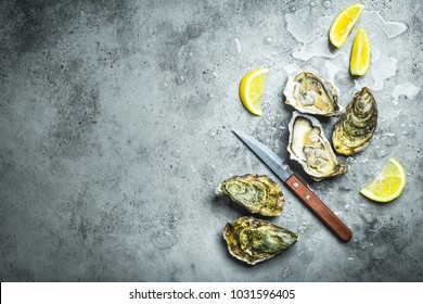 Fresh oysters on ice, knife, lemon wedges. Rustic stone background. Opened fresh raw oysters. Top view. Copy space. Oyster bar. Seafood. Oysters concept. Party food. Space for text. From above