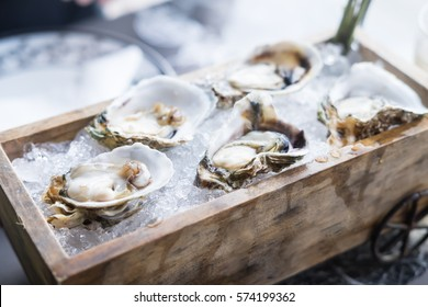 Fresh oysters on wooden tray, food background