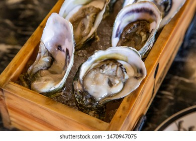 Fresh oysters over ice served in the restaurant