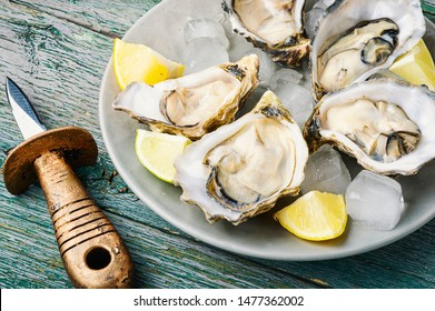 Fresh oysters in plate of ice and lemon
