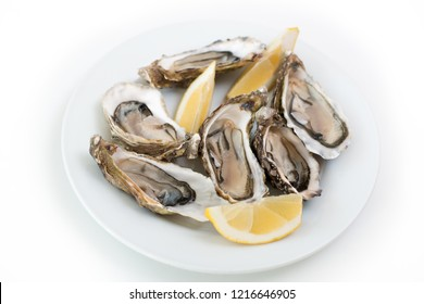 Fresh oysters. Raw fresh oysters on white round plate, image isolated, with soft focus. Restaurant delicacy. Saltwater oysters
