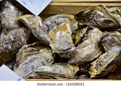 fresh oysters in a wooden box on the market