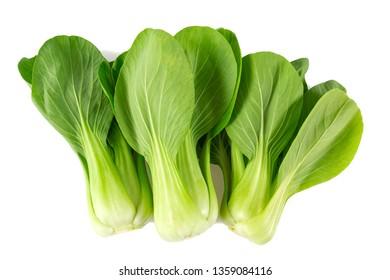 fresh pak choi cabbage isolated on white background