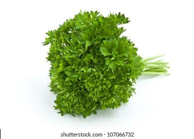 Fresh parsley on white background