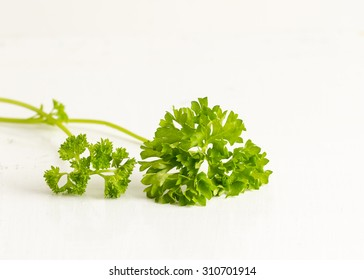 Fresh Parsley on a White Background,Herb