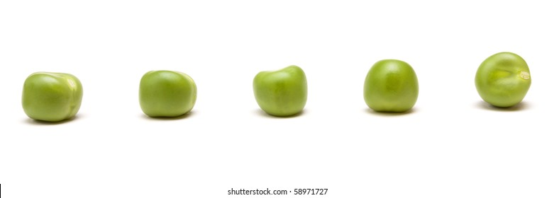 Fresh Pea Pods from low perspective isolated against white background.