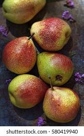 Fresh pears on rustic metal sheet