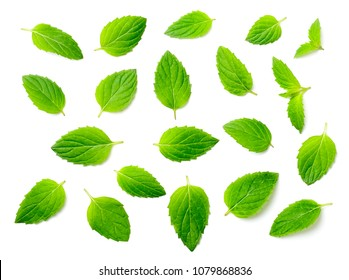 fresh peppermint leaves isolated on white, top view