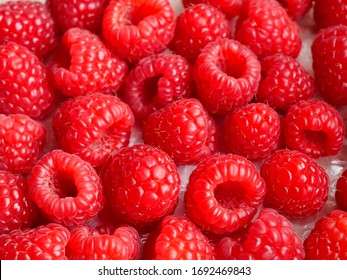 fresh-perfect-red-delicious-raspberries-