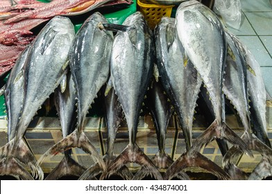 Fresh Philippine Yellow Fin Tuna in Fish Market