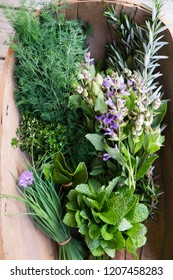 Fresh picked herbs from kitchen garden: chives, mint, thyme, rosemary, dill, sage with edible purple flowers and green leaves