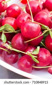 Fresh picked ripe red sour baking cherry fruit.