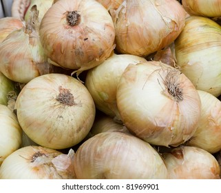 Fresh picked sweet onions on display at the farmer's market