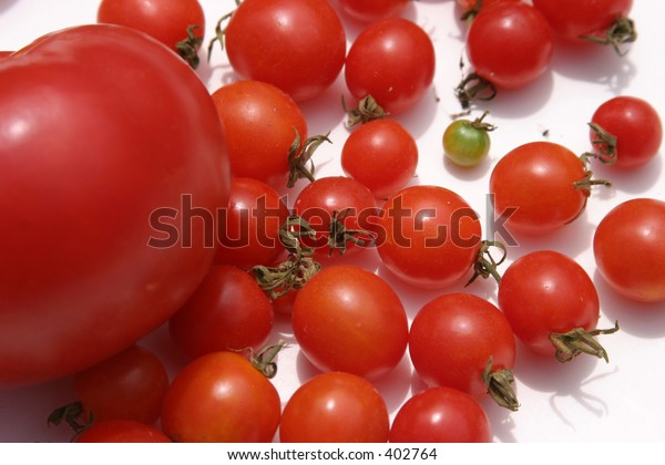 fresh picket tomatoes with one green one