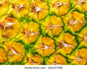 Fresh Pineapple fruit close-up view