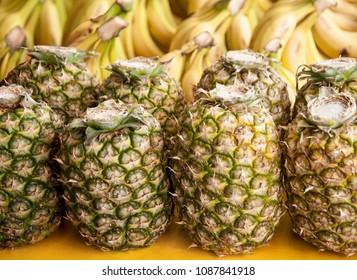 fresh pineapple for sale