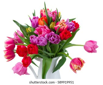 fresh pink, purple and red tulips in vase close up isolated on white background