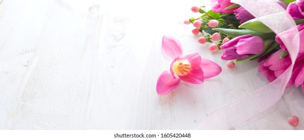 Fresh pink tulips on white vintage background. Spring motiv for a greeting card. Space for text.
